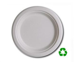 Eco Friendly 6 Biodegradable Plates (50 Count)