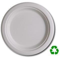 Eco Friendly 9 Biodegradable Plates (50 Count)